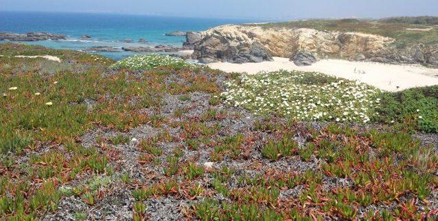 a0117189355 Portugal's Best Beaches: Porto Covo