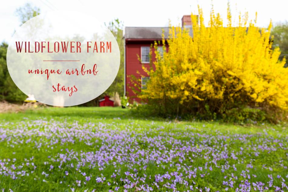 unique stays in massachussets farm airbnb
