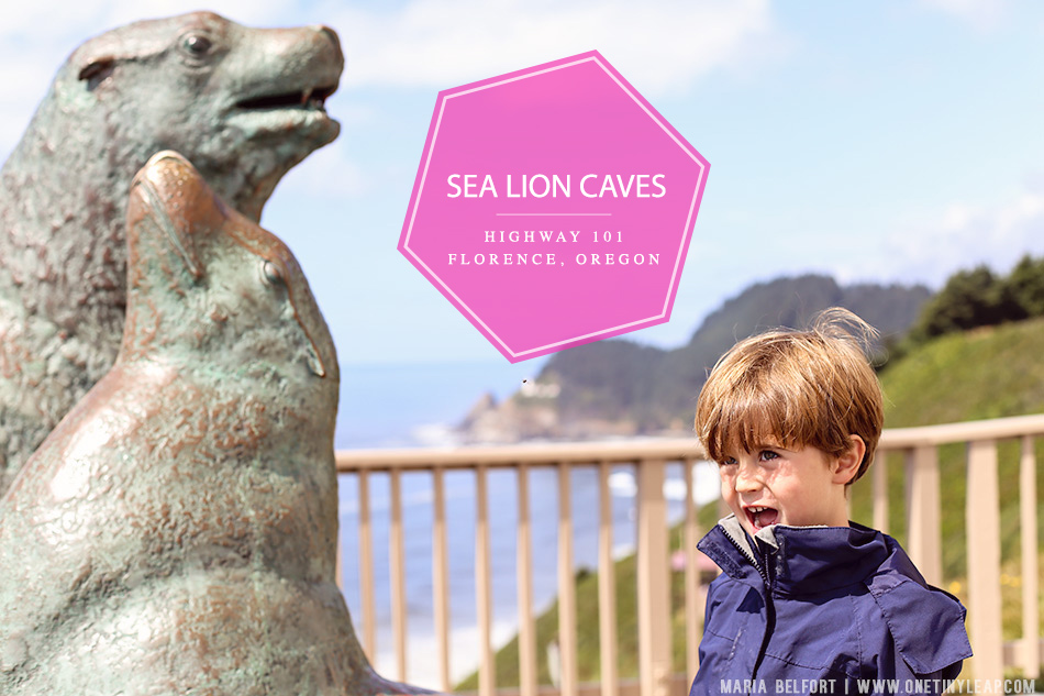 VISIT SEA LION CAVES OREGON