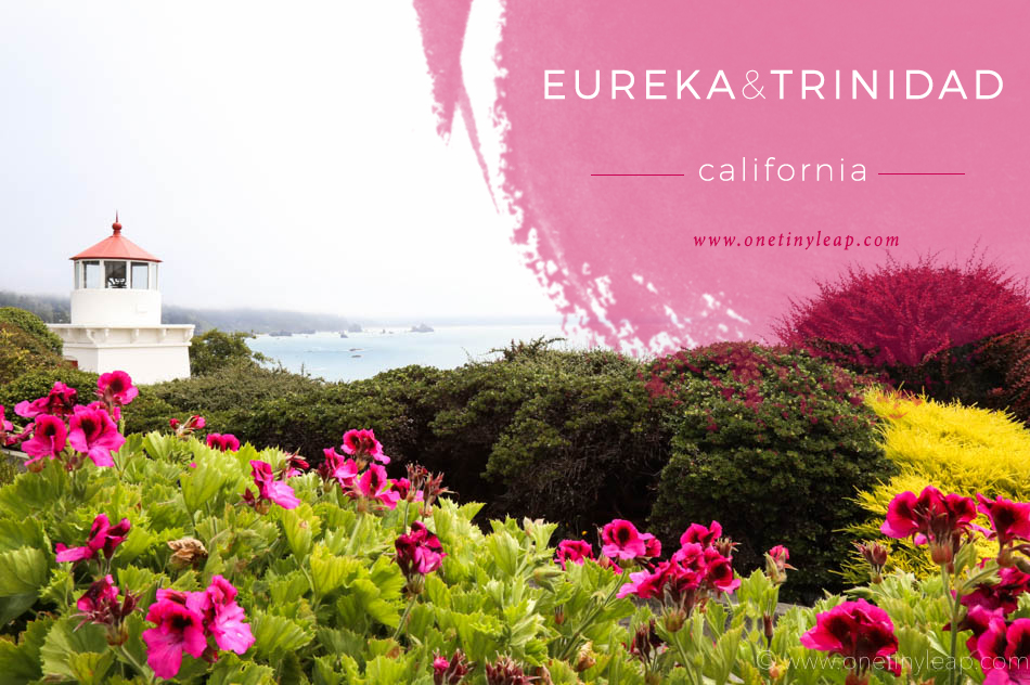 Visit Eureka and Trinidad California with Kids