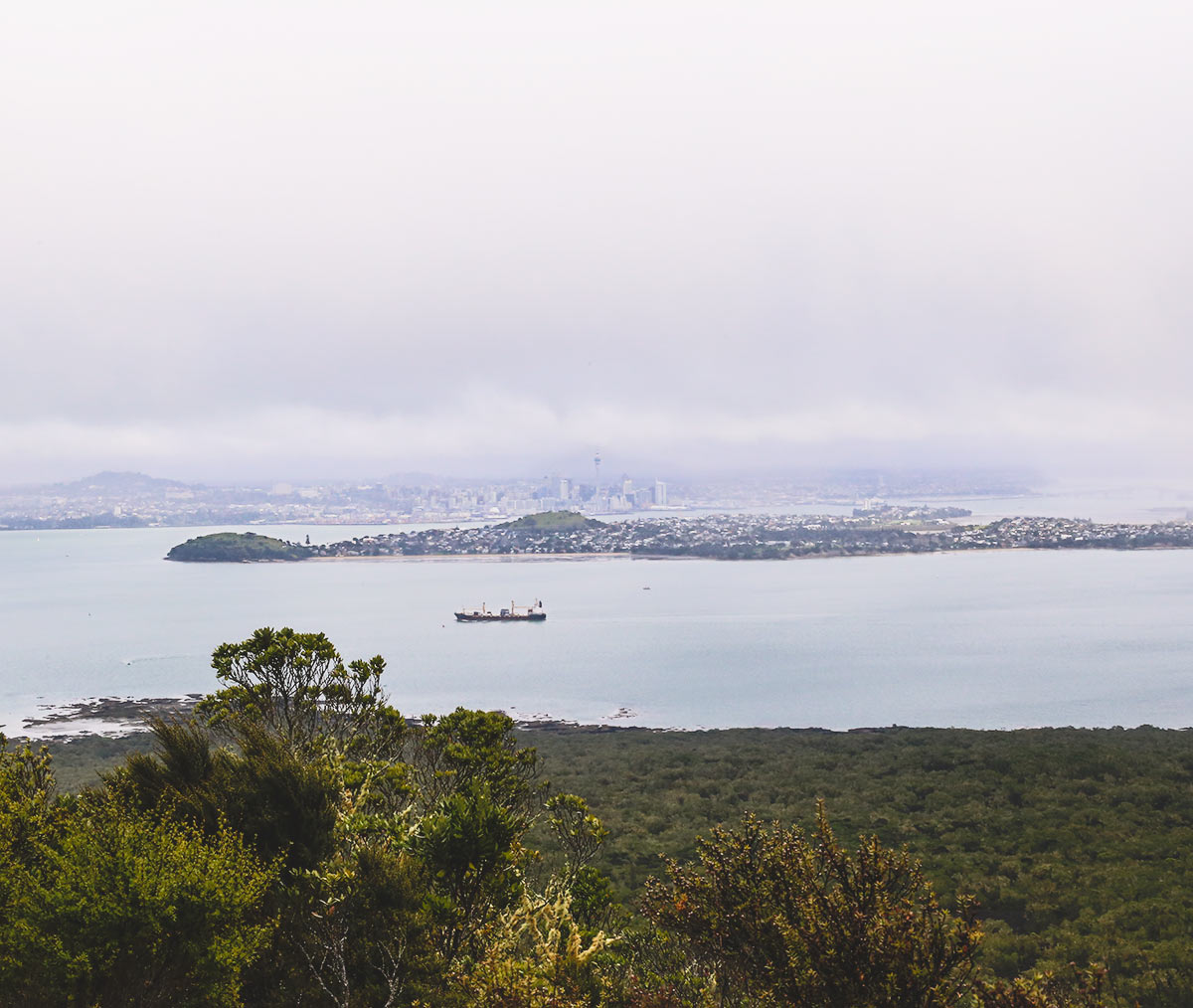 Rangitoto Island With Kids