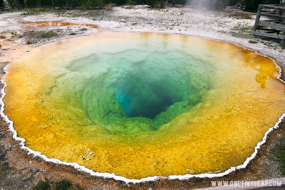 Yellowstone National Park Photography